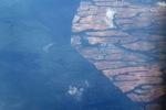 Oil palm on peatland -- sabah_0044