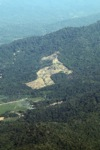 Loss of rainforest in Malaysia -- sabah_0082