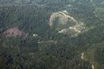 Deforestation -- sabah_0088