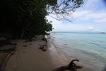 Sapi Island beach -- sabah_0174
