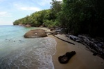 Sapi Island beach -- sabah_0180