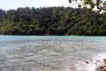 Sapi Island -- sabah_0263