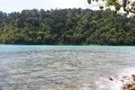 Sapi Island -- sabah_0264