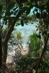 Sapi Island -- sabah_0279