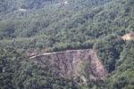 Deforestation -- sabah_0291