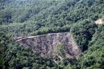 Deforestation -- sabah_0292