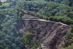 Deforestation -- sabah_0295