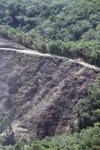Deforestation -- sabah_0297