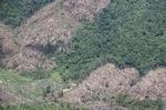 Deforestation in Malaysian Borneo -- sabah_0402