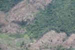 Deforestation in Sabah, Malaysia -- sabah_0404