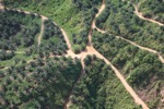 Oil palm plantation -- sabah_0421