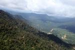 Oil palm plantation -- sabah_0436