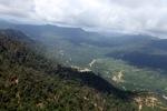 Oil palm plantation -- sabah_0438