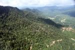 Oil palm plantation -- sabah_0447