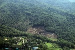 Loss of rainforest in Borneo -- sabah_0521