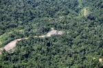 Loss of rainforest in Malaysia -- sabah_0524