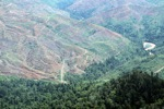 Forest loss in Malaysian Borneo -- sabah_0534