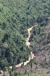 Deforestation in Borneo -- sabah_0544