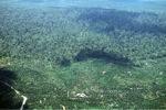 Oil palm plantation -- sabah_0550