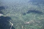 Oil palm plantation -- sabah_0551