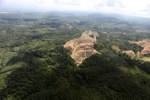 Oil palm plantation -- sabah_0560