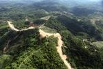 Oil palm plantation -- sabah_0596
