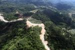 Oil palm plantation -- sabah_0598