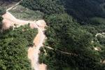 Oil palm plantation -- sabah_0602