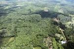 Oil palm plantation -- sabah_0612