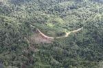 Logging road -- sabah_0634