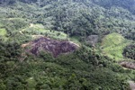 Deforestation in Borneo -- sabah_0646