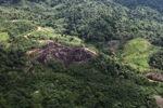 Deforestation in Borneo -- sabah_0647