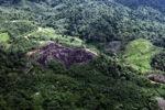 Deforestation in Borneo -- sabah_0648