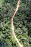 Logging road -- sabah_0655