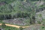 Deforestation in Borneo -- sabah_0672