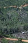 Deforestation in Borneo -- sabah_0677