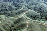 Deforestation in Borneo -- sabah_0680