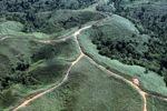 Deforestation in Borneo -- sabah_0681