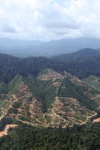 Deforestation for oil palm -- sabah_0702