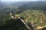Deforestation for oil palm -- sabah_0708