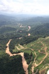 Deforestation for oil palm -- sabah_0716