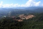 Deforestation for oil palm -- sabah_0730