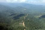 Logging road -- sabah_0836