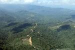 Logging road -- sabah_0837