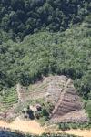 Deforestation in Borneo -- sabah_0854