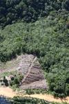 Deforestation in Borneo -- sabah_0858