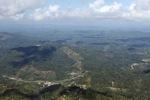 Oil palm plantation -- sabah_0861