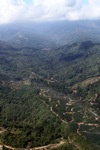 Oil palm plantation -- sabah_0870