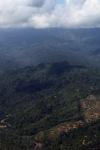 Deforestation in Borneo -- sabah_0872