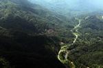 Deforestation in Borneo -- sabah_0912
